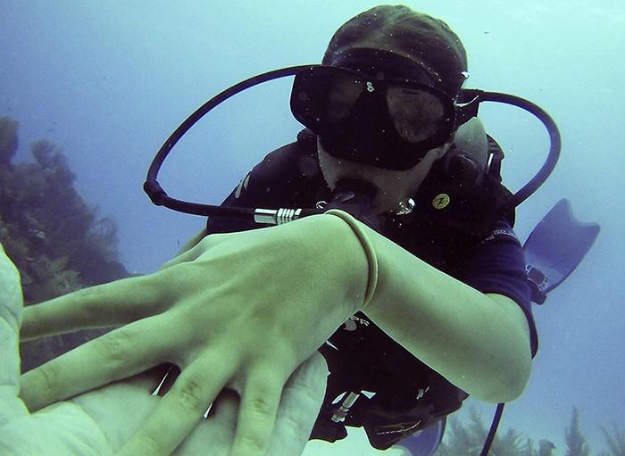 discover scuba1